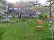 Bildinhalt: Der große Garten mit seinen alten Obstbäumen ist bei Stadtführungen zu besichtigen.