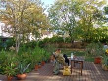 Bildinhalt: ein sonniger Nachmittag im paradiesischen Hostelgarten