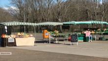Bildinhalt: Sonst dicht umlagert, am Cottaweg deprimierende Leere: Stände und Verkäuferin warten auf Kundschaft